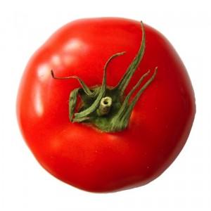 pomodoro1
